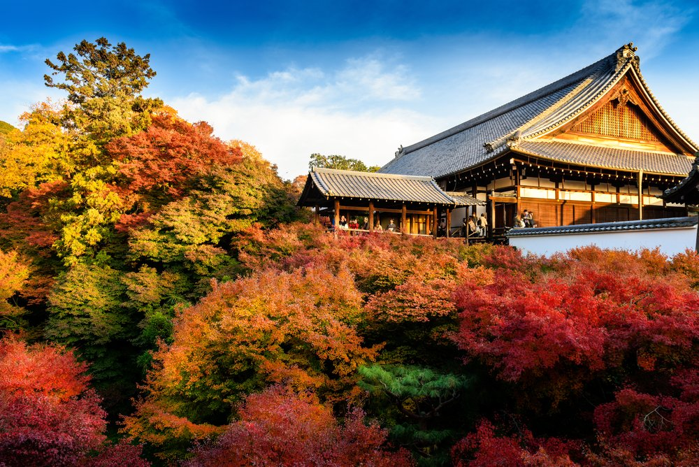Kyoto Autumn