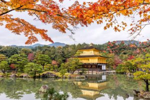 7-Day Pass – Autumn Main Itinerary