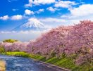 The Ultimate Japan Travel Bucket List