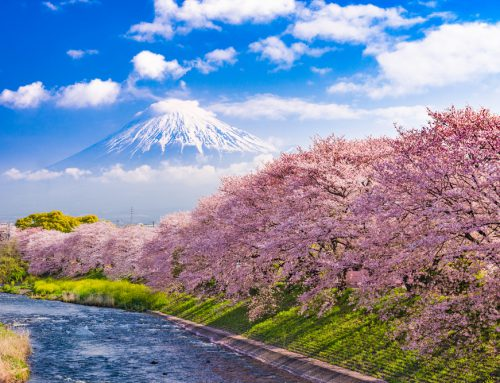 The Ultimate Japan Travel Bucket List