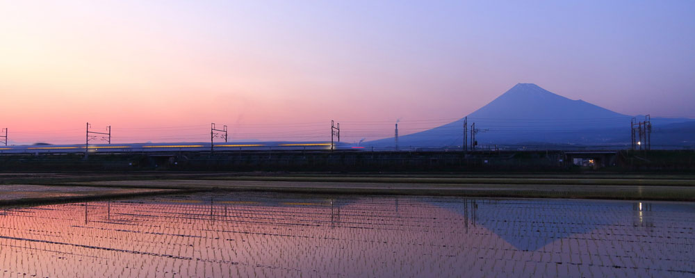 Bullet Train at Sunset